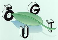 Das Logo der ÖGUT 1985 - 1997